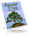 **New** Bonsai Tree